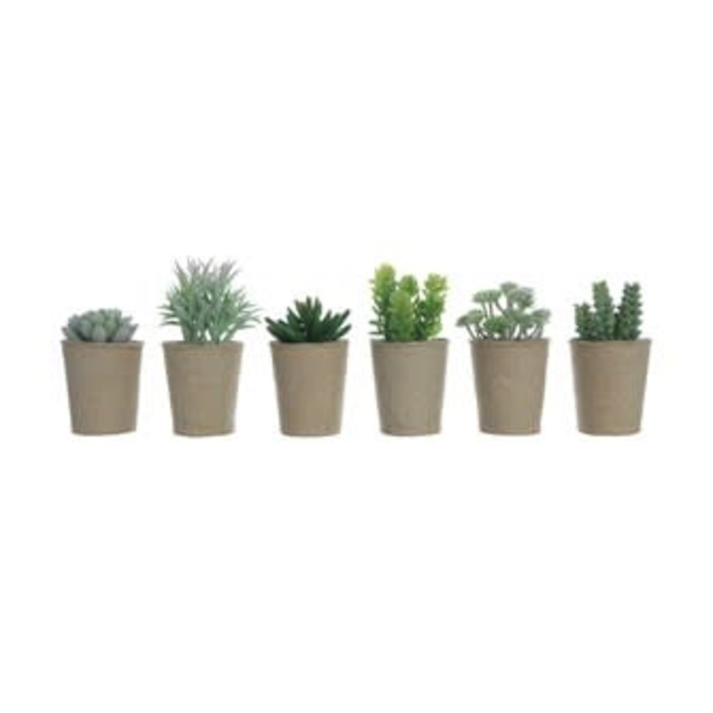 "Creative Coop 5.5""H Faux Succulent in Paper Pot"