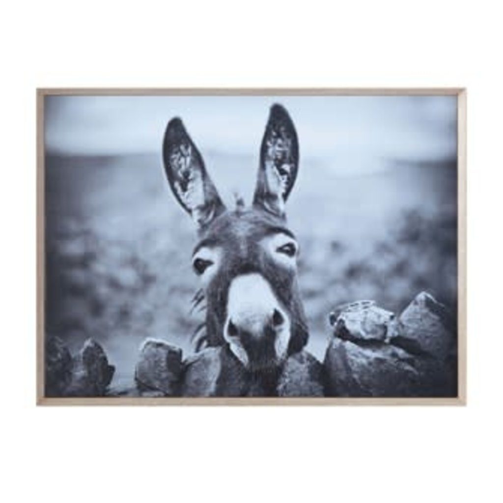 Creative Coop Framed Canvas Wall Decor with Donkey
