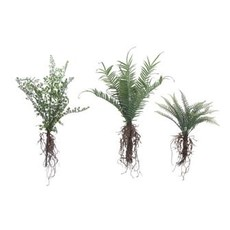 Creative Coop Faux Fern with Exposed Roots