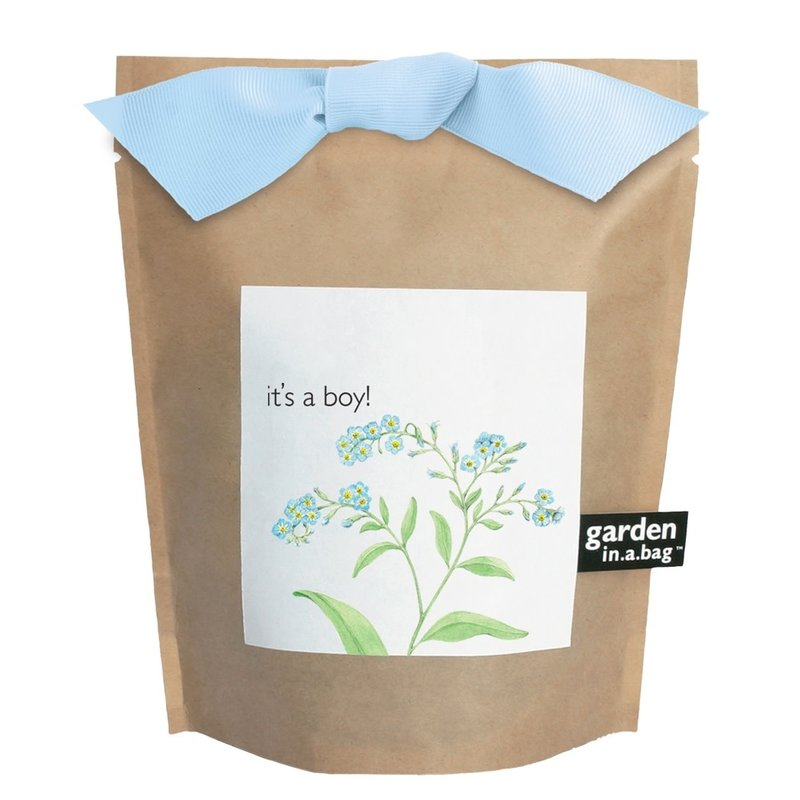 Potting Shed Creations Garden in a Bag | It's a Boy