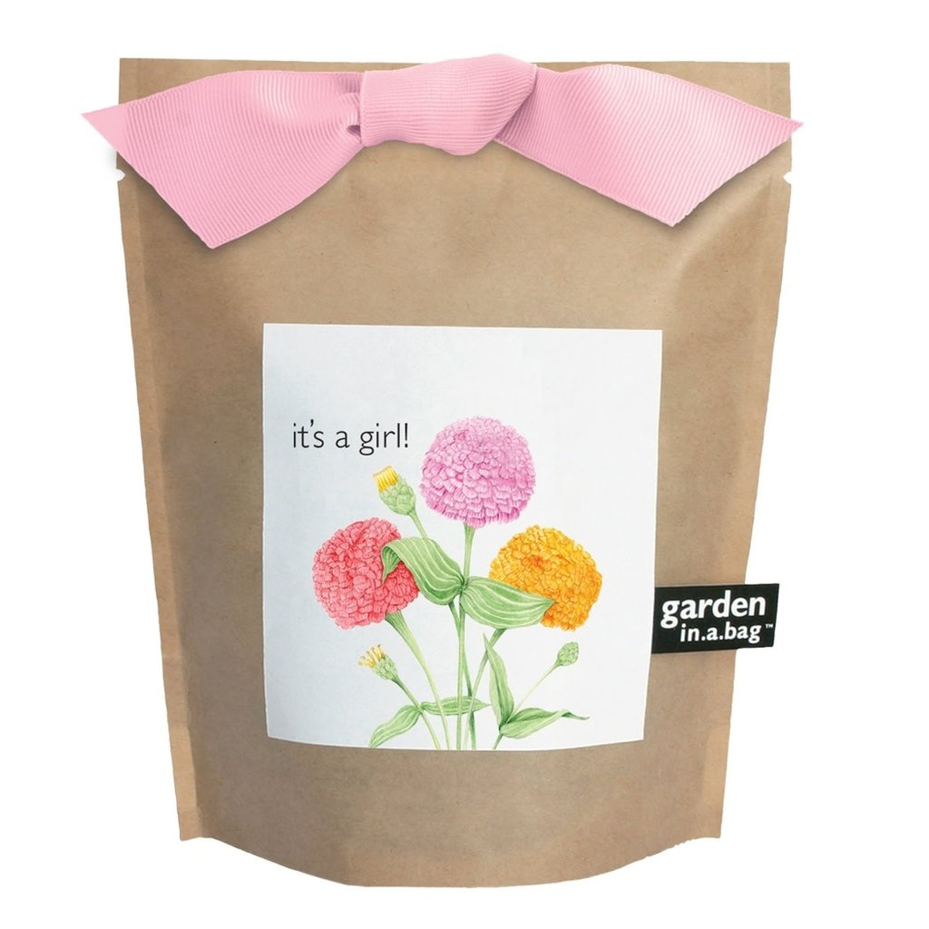 Potting Shed Creations Garden in a Bag | It's a Girl