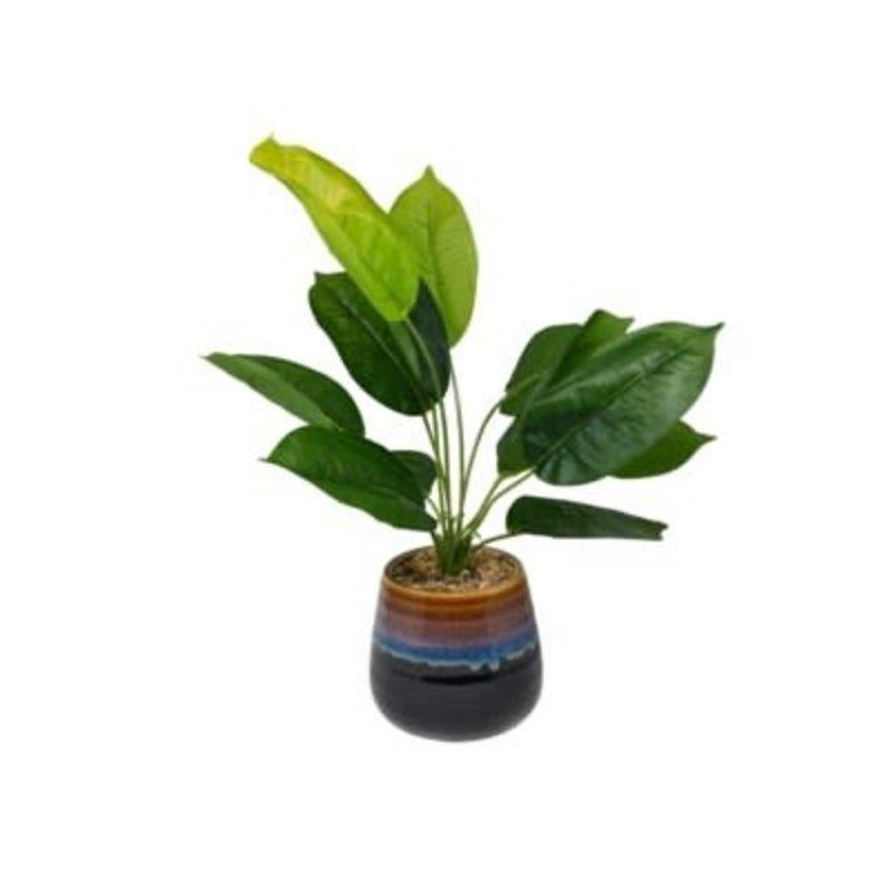 Nostalgia Tall Plant - Green