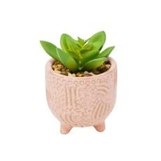 Nostalgia Pink Pot - with Plant