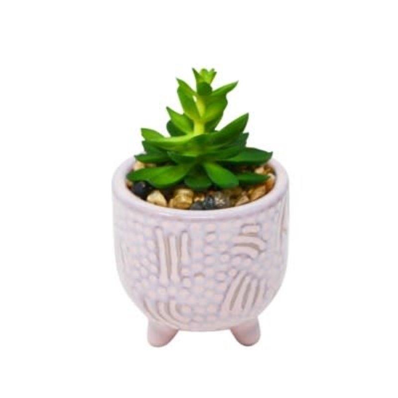 Nostalgia Lilac Pot - with Plant