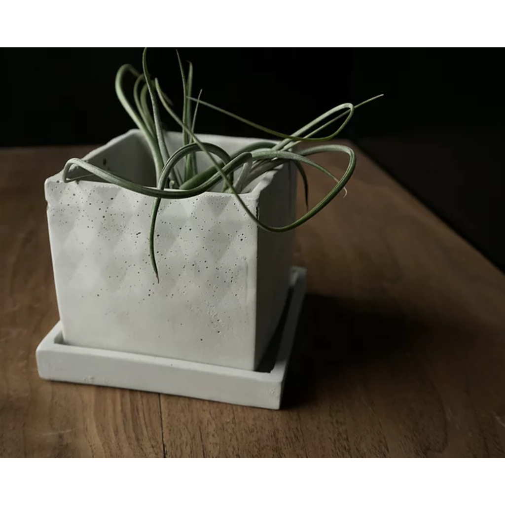 Square Planter with Tray - White