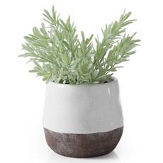 "Torre & Tagus Corsica Ceramic Crackle 2 Tone 4"" Round Pot - White"