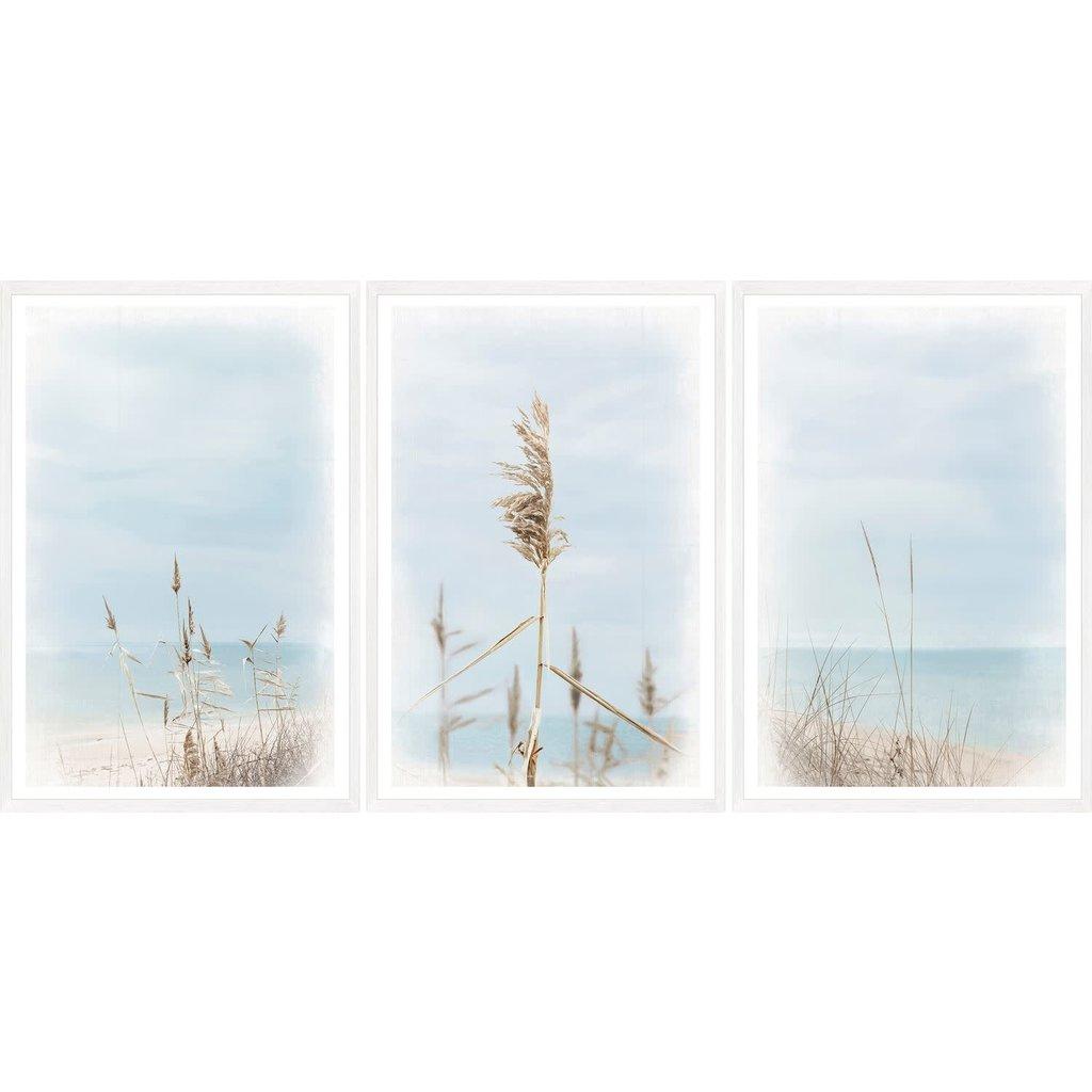 Dune Grass Triptych