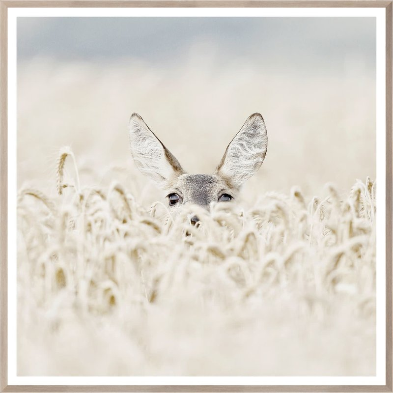 Celadon Peekaboo Deer