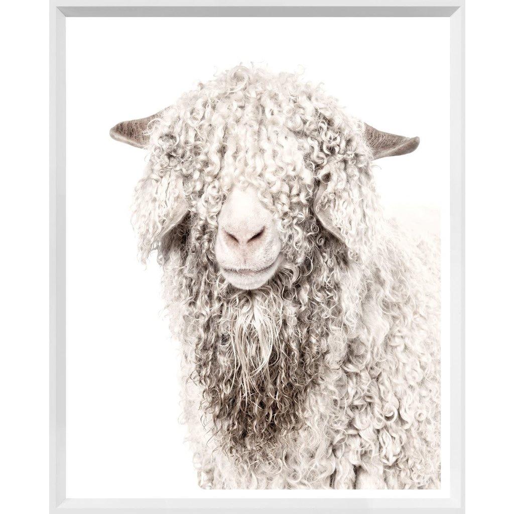 Mod. Farm - Angora Goat - Mini - White