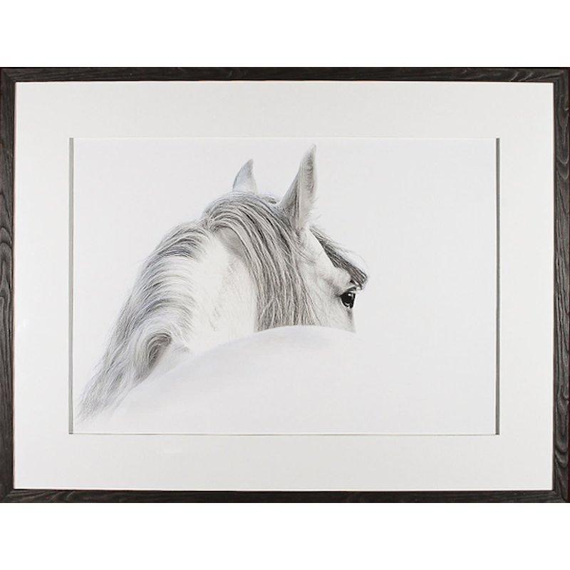 Celadon Grey Andulusian