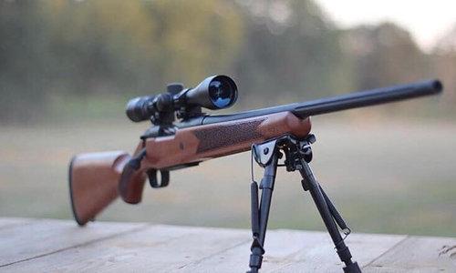 Rifles (Rimfire)