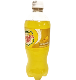 Canada Dry Pineapple