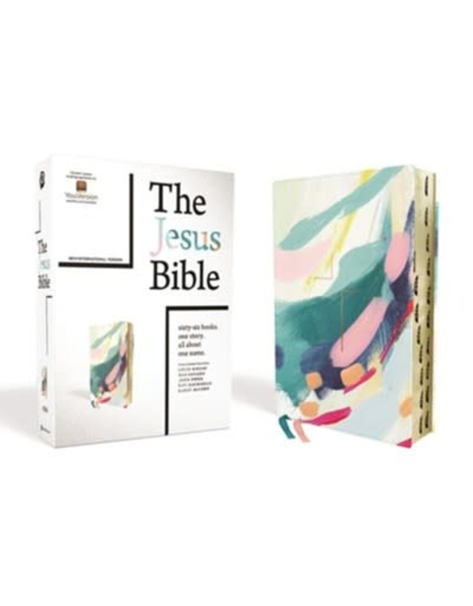 The Jesus Bible, Artist Edition