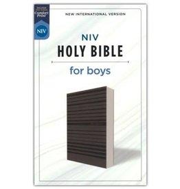 NIV Holy Bible for Boys