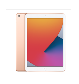 APPLE GOLD 10.2-INCH IPAD WI-FI 128GB