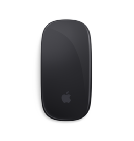 APPLE SPACE GRAY MAGIC MOUSE