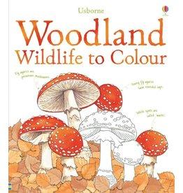 Usborne Woodland To Colour
