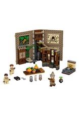 LEGO Harry Potter - 76384 Hogwarts Monent: Herbology Class