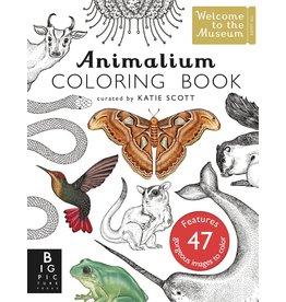 Penguin Random House Animalium Colouring  Book