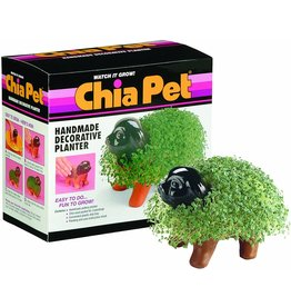 Joseph Enterprises Chia Pet Puppy Decorative Planter