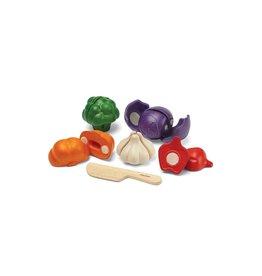 Plan Toys 5 Colour Veggie Set