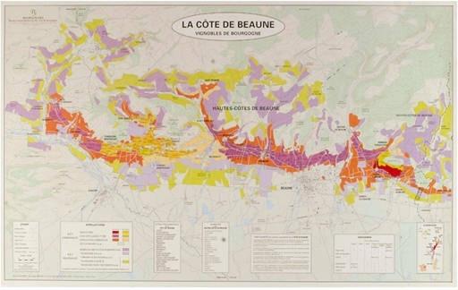 Art & Cartographie Atlas des Grands Vignobles de Bourgogne Deux Cartes