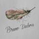 "Bruno Dubois ""Plume"" Saumur-Champigny 2018 750ml"