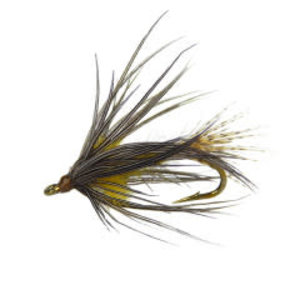 Holly Flies Soft Hackle Blue Wing Olive Emerger