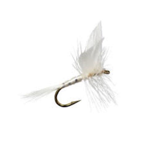 White Miller (White Fly)
