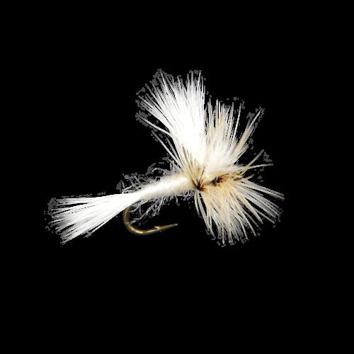 Wulff-White