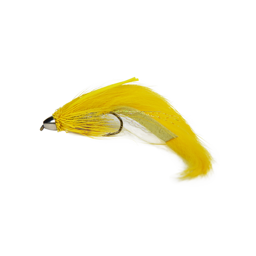 Conehead Muddonker