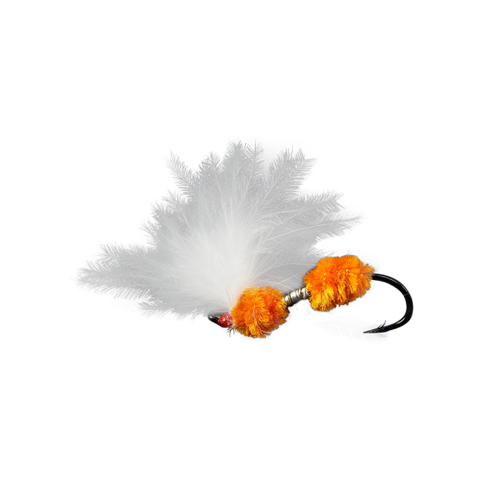 Double Egg Sperm-Orange