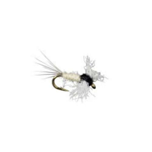 Trico Spinner-Female