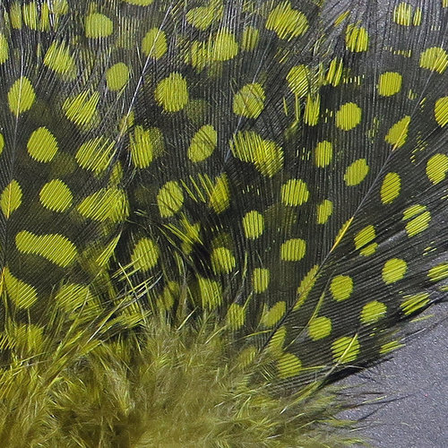 Hareline Hareline Strung Guinea Feathers