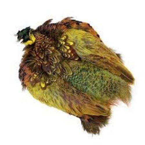 Wapsi Ringneck Pheasant Skin