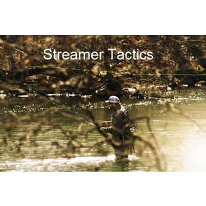 Precision Fly Fishing Mt. Holly Springs Streamer Tactics Class