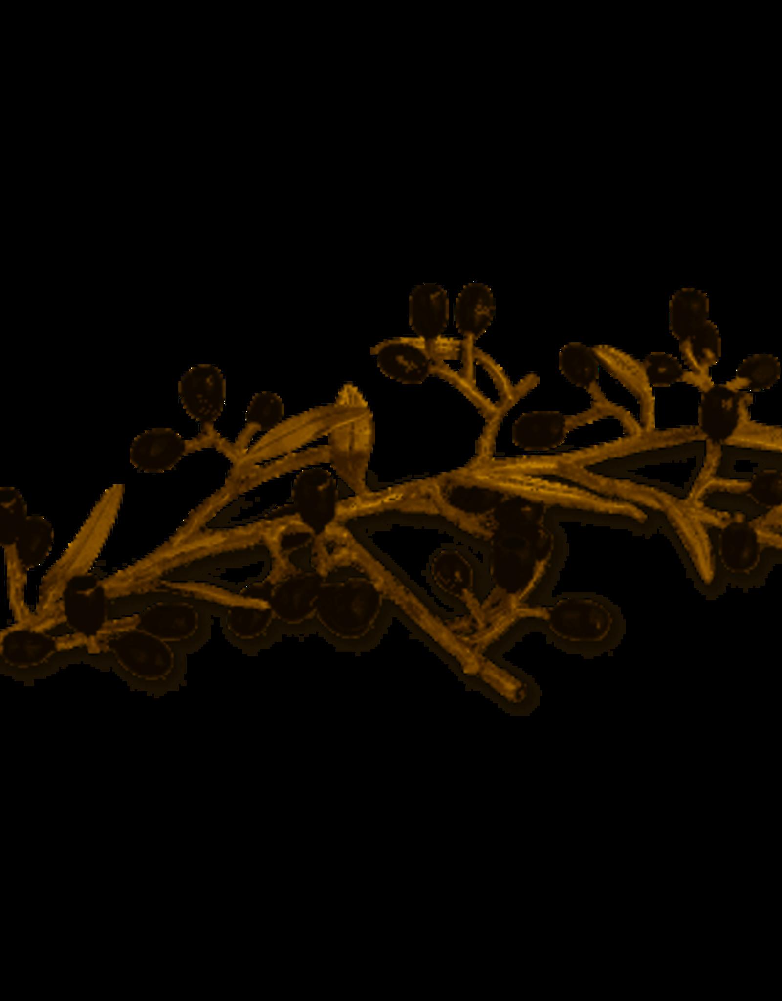 Menorah, Michael Aram Gold Olive Branch