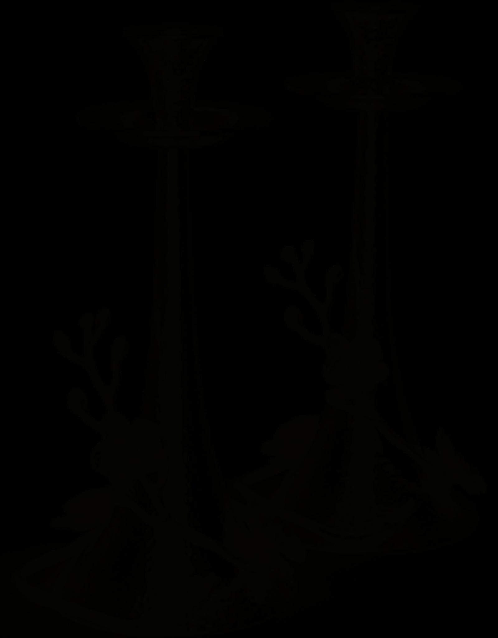 Candleholder, Black Orchid pair, Michael Aram