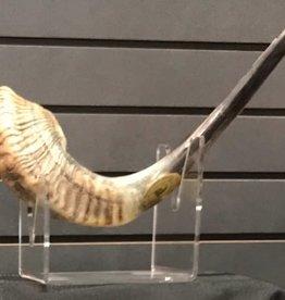 Shofar, Ram's Horn, XL