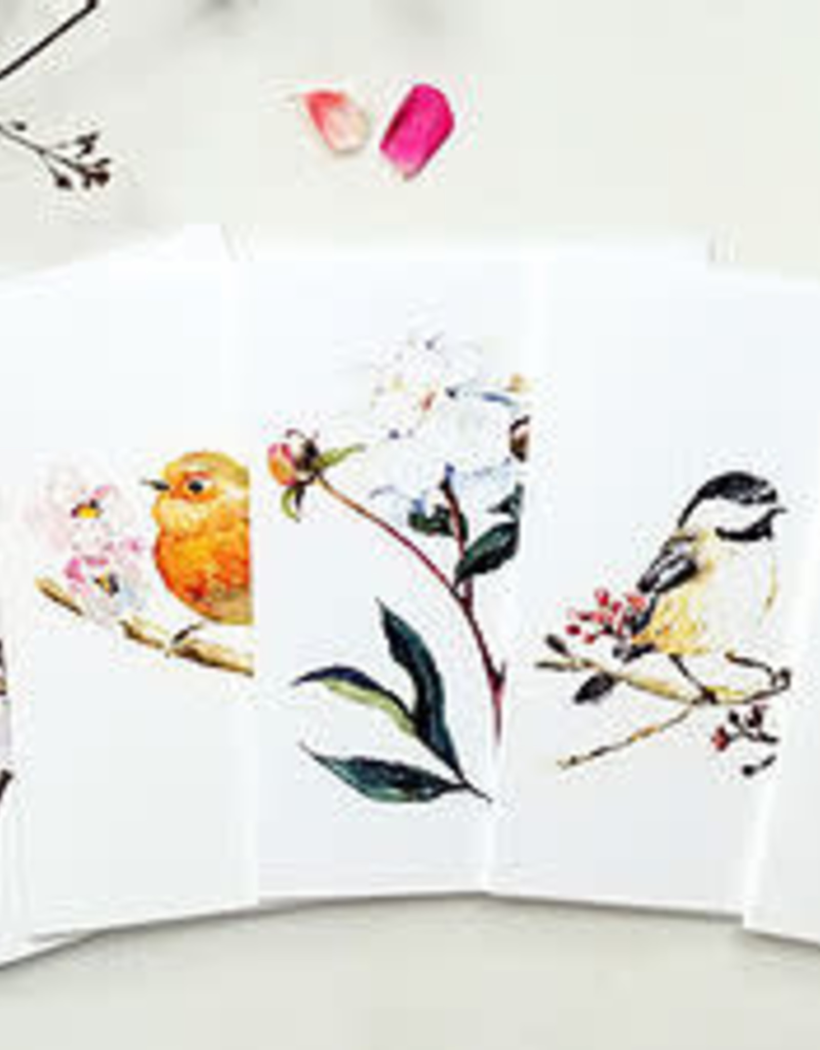 Coral Barclay Note cards package of 6