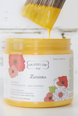 Country Chic Country Chic Paint Sample - 4oz Luminous