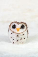 Spectacled Bear Barn Owl