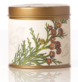 Candle, Signature Tin, Forest