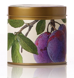 Wild Plum & Cannabis Signature Tin Candle