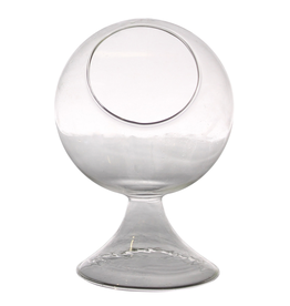 "5.5"" x 8"" Round Glass Terrarium"