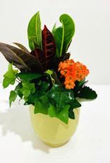 "4"" Fall Arrangement in Ceramic Pot"