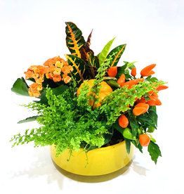 "8"" Fall Arrangemet in Yellow Glass Bowl"