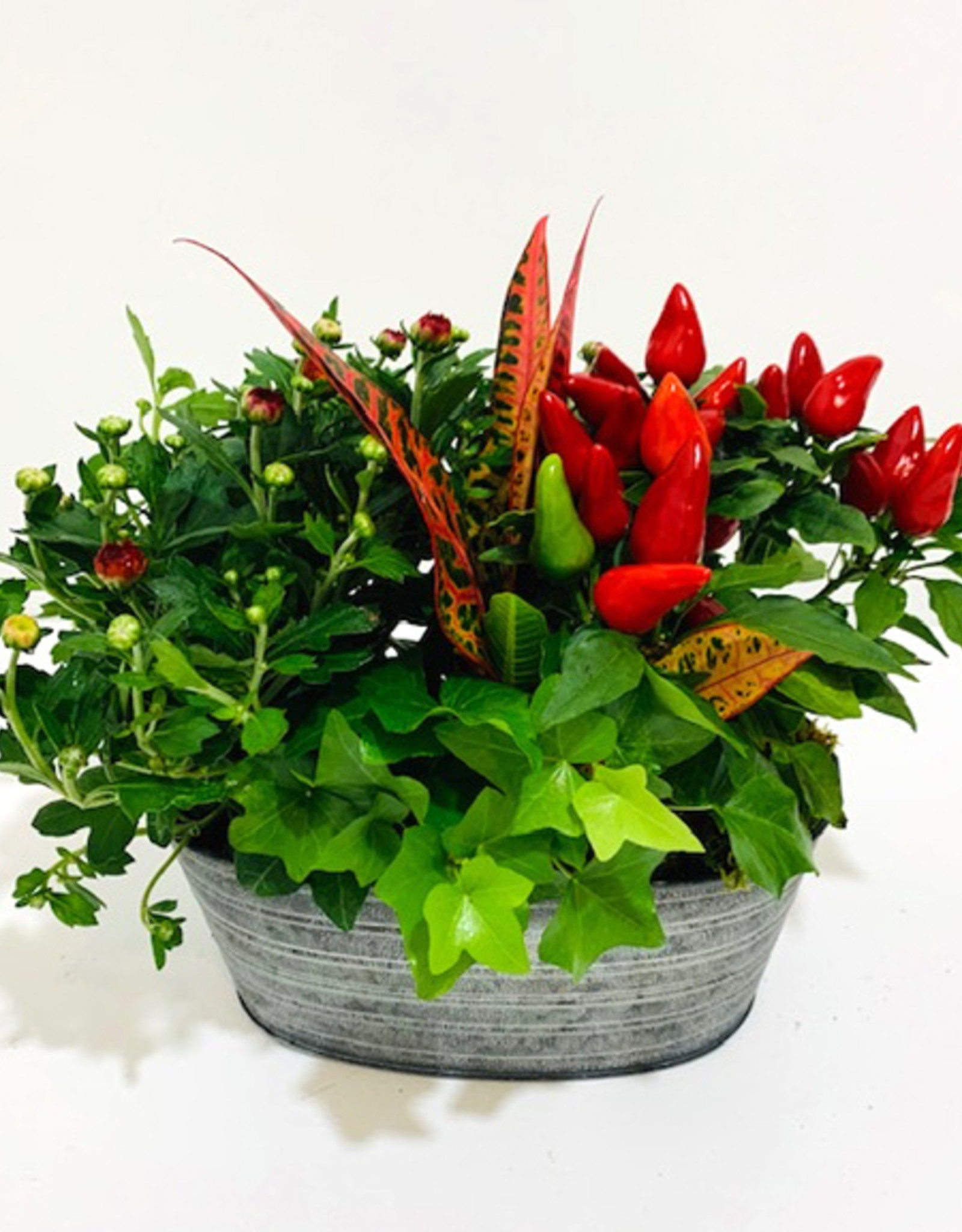 """8"""" Fall Arrangement in Oval Tin Container"""
