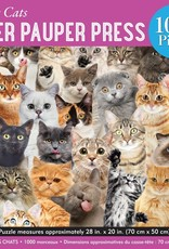 All The Cats Puzzle