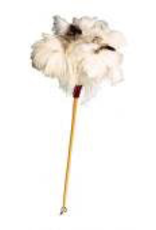 Feather Duster, White, 60cm